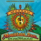Mountain Jam Festival Pass